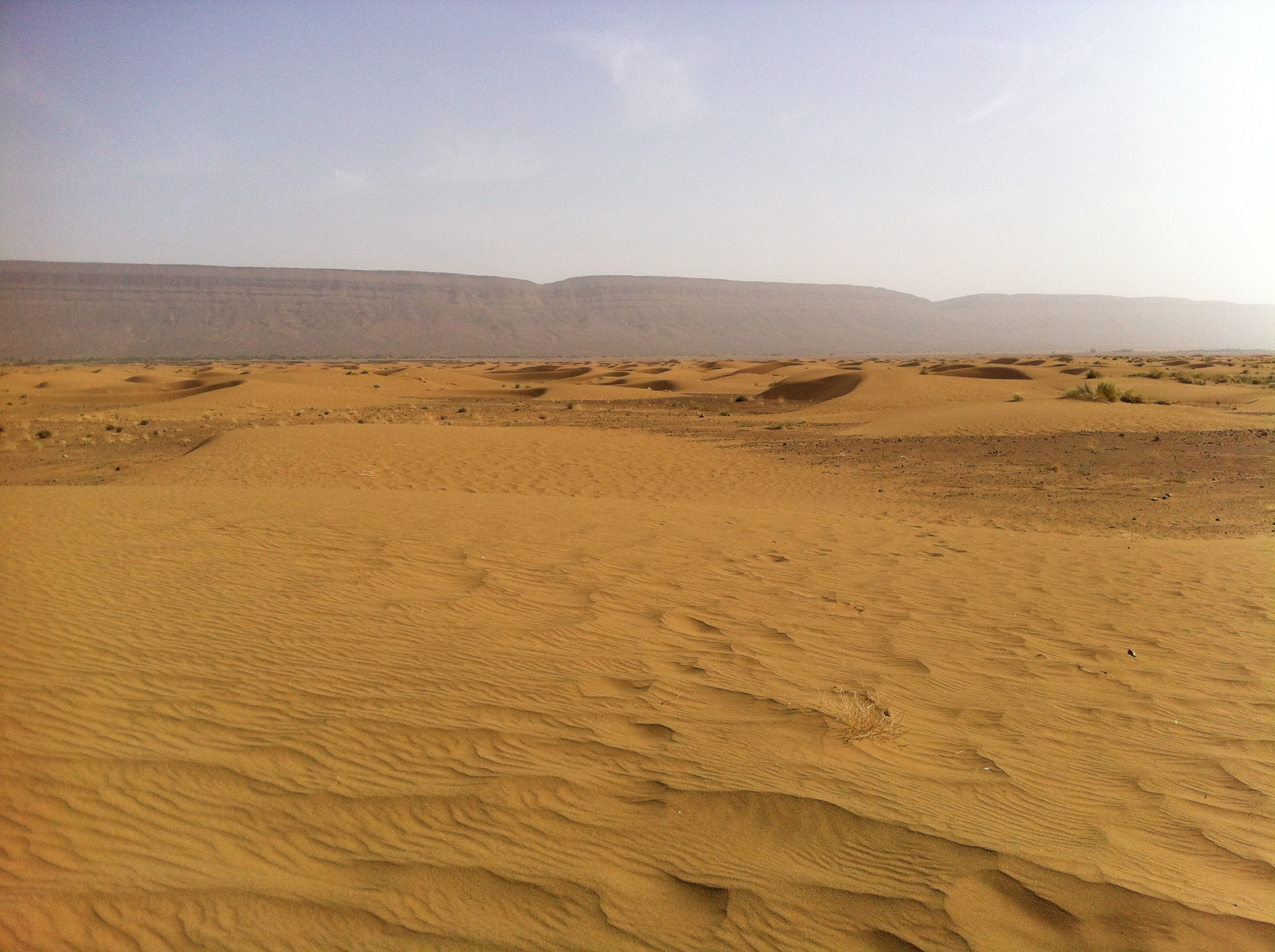Désert de la vallée du Drâa
